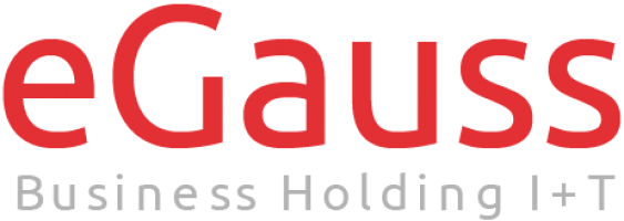 eGauss Business Holding I+T (ES)